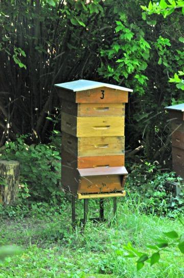 tout savoir sur la fabrication du miel le miel en cuisine et les cakes l 39 dito de pascale weeks. Black Bedroom Furniture Sets. Home Design Ideas