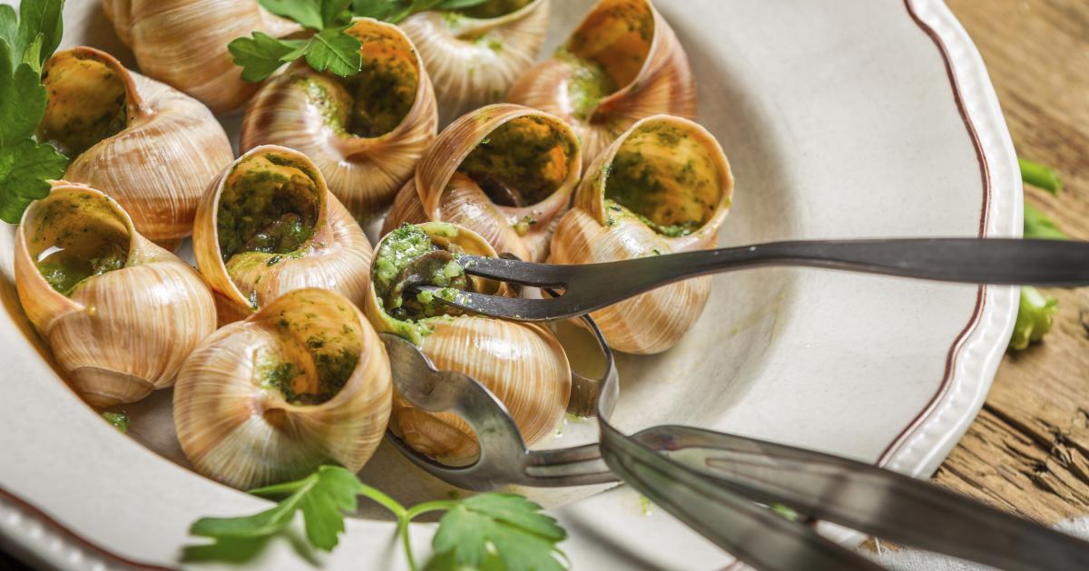 Recettes base d 39 escargots les recettes les mieux not es - Comment cuisiner les coquilles st jacques congelees ...