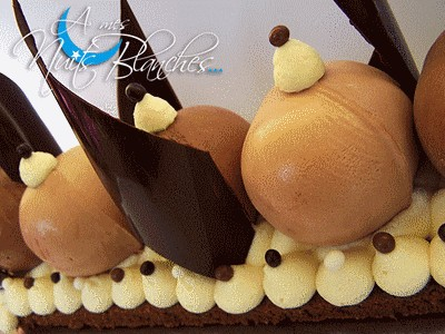 Buche chocolat blanc biscuit de reims