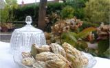 Financiers à la pistache, déguisés en madeleines