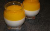 Panna cotta aux spéculoos et son coulis de mangue