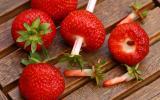Comment équeuter des fraises sans en perdre la moitié