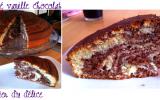 Gâteau zébré moelleux au chocolat