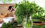 Ces herbes aromatiques que l'on devrait toujours avoir dans le jardin ou sur son balcon