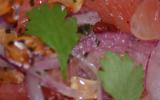 Salade de Pamplemousses (yum some-oh)
