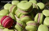 Saga macarons : à la fraise, c'est de saison !