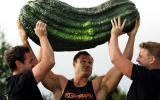 Top 10 des plus gros légumes du monde