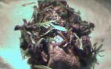 Filet mignon de porc en croûte aux champignons des bois