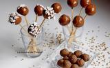 Boule au sarrasin, amande, pruneau et chocolat