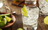 Rhume des foins ? Buvez un gin tonic