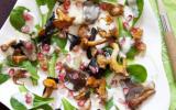 Une salade de mâche aux champignons et à la grenade.... façon tableau de peintre