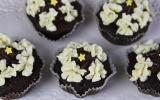 Cupcakes faciles au chocolat