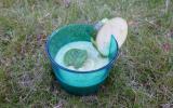 Gaspacho de courgettes marinées