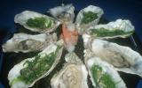 Huîtres chaudes au champagne et algues vertes