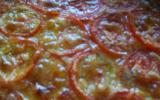 Tarte à la tomate et au saumon
