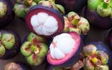 Pourquoi vous devez absolument manger du mangoustan ?