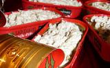 rillettes de sardine dans leur boite