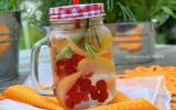 Eau aromatisée au melon, groseilles et citron