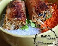 Recettes de nems au porc les recettes les mieux not es Nems vietnamiens