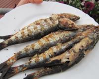 Cuisiner des sardines au barbecue les recettes les mieux not es - Sardine grillee au barbecue ...