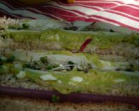 recettes de sandwich au surimi les recettes les mieux not es. Black Bedroom Furniture Sets. Home Design Ideas