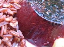 Gelée de betterave au sésame à l'agar-agar