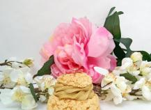 Choux craquelin à la pistache, à la vanille et à la framboise