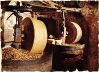 huile de noix moulin de la tour