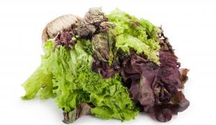Comment recycler sa salade défraîchie ?