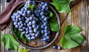 Ces 10 fruits et légumes qui sont de saison en octobre