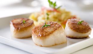 Comment réussir la cuisson des Saint-Jacques ?