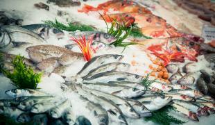 Les bons plans pour manger du poisson plus souvent sans se ruiner