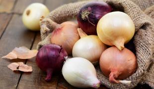 Rouge, jaune, blanc : quel oignon pour quelle recette ?