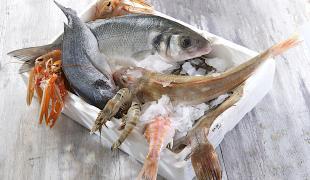 3 recettes pour manger du poisson sans détruire la planète
