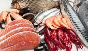 Quels sont les poissons bons pour la santé ?