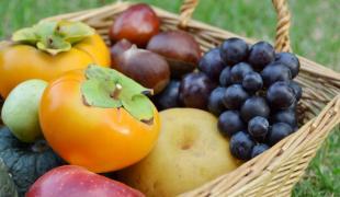 Que manger de bon en octobre ? (à part des courges)