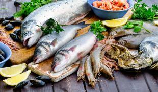 Quels sont les poissons de saison en hiver ?