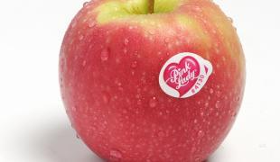 5 bonnes raisons de manger des Pink Lady®