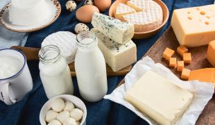 Intolérant au lactose, est-ce que je peux manger du fromage et des yaourts ?
