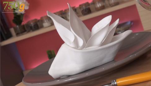 Pliage de serviettes en forme de voilier vid o - Pliage serviette ourson ...