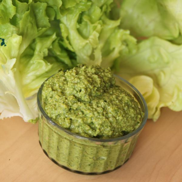 Recette , Pesto de salade verte (laitue et feuille de chêne) à la pistache