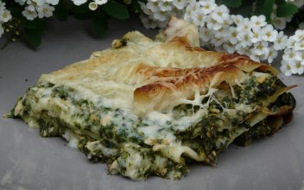 Recette Lasagnes Au Saumon Et Aux Epinards 750g