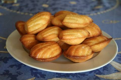recette madeleines au yaourt 750g. Black Bedroom Furniture Sets. Home Design Ideas
