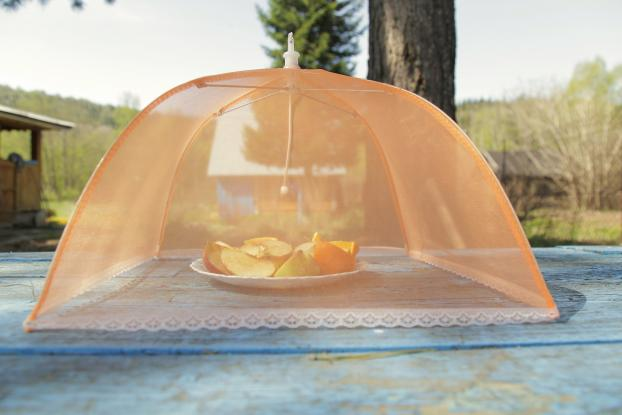 les astuces pour se d barrasser des moucherons autour des fruits. Black Bedroom Furniture Sets. Home Design Ideas