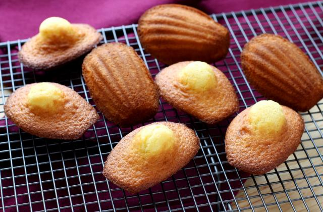 Madeleines, la recette 100% fiable ! - Photo par Pascale Weeks
