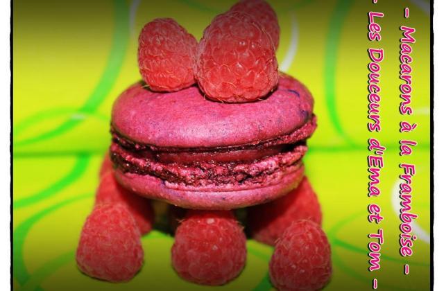 Macarons à la framboise inratables - Photo par Les douceurs d'Ema et Tom