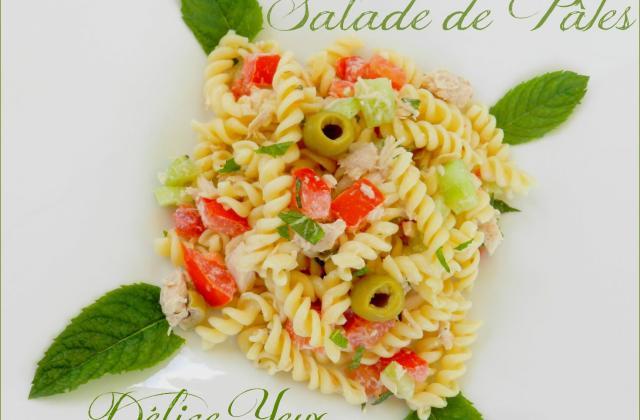 La salade de pâtes, thon et menthe... - Photo par MamaDélice