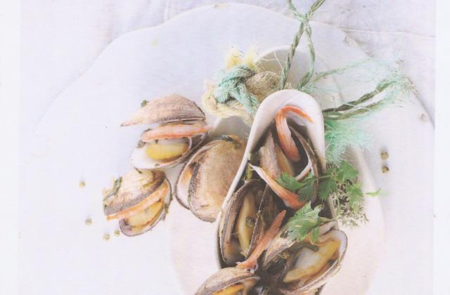 Coquillages en Grands Coraya - Photo par Coraya