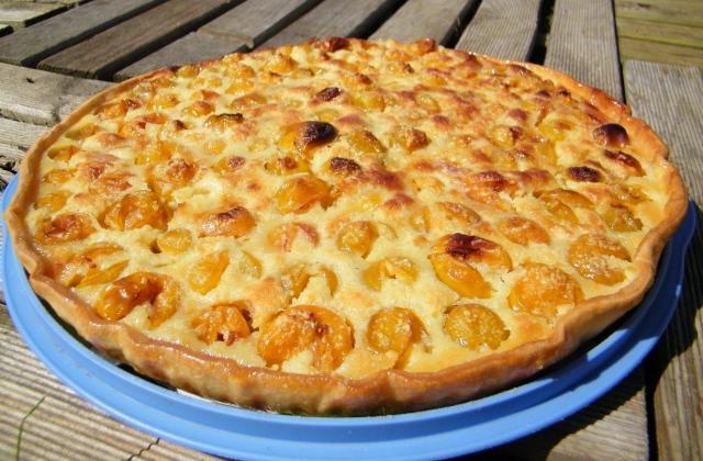 8 recettes originales de tarte aux prunes - Photo par lydiecH