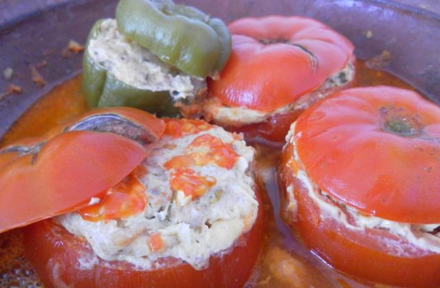 Tomates farcies à la dinde - Photo par Graines de blé